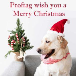 Proftag hundetegn ønsker glædelig jul.